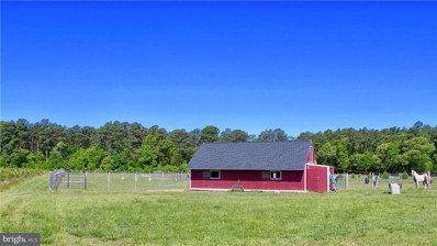 34164 Hitch Pond Road, Laurel, DE 19956 - MLS#: 1001029304
