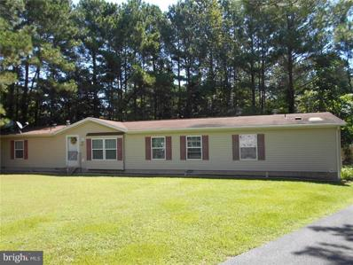 32864 E Carteret Court, Millsboro, DE 19966 - MLS#: 1001032184