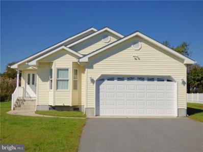 38175 Roy Creek Lane, Selbyville, DE 19975 - MLS#: 1001033744