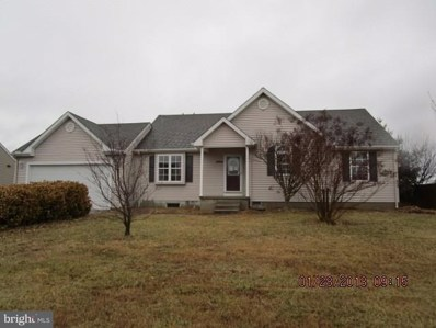 31503 Red Mill Drive, Lewes, DE 19958 - MLS#: 1001036008