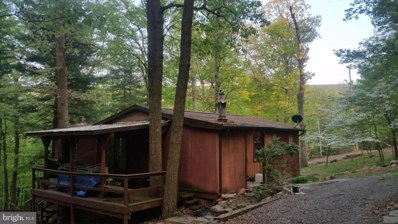 157 Calypso Trail, Great Cacapon, WV 25422 - #: 1001183540