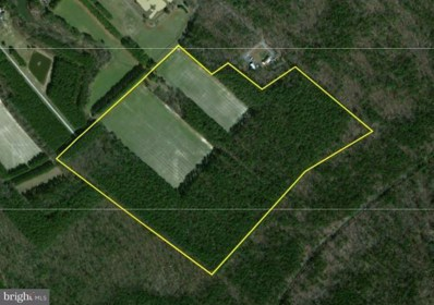 Chloras Point Road, Trappe, MD 21673 - MLS#: 1001248994