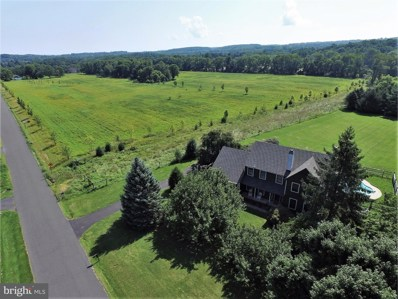 5987 Stovers Mill Road, Carversville, PA 18902 - MLS#: 1001257135