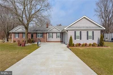217 Irons Avenue, Millsboro, DE 19966 - MLS#: 1001406670