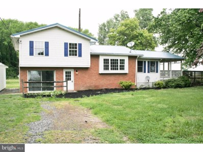 6335 Big Pine Road, Bridgeville, DE 19933 - MLS#: 1001462164