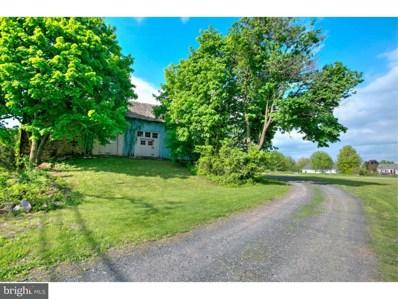 492 Old Swede Road, Douglassville, PA 19518 - MLS#: 1001545166
