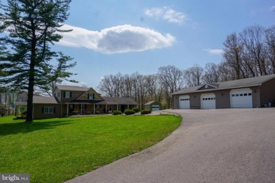 371 Pysell Road, Mc Henry, MD 21541 - #: 1001545398