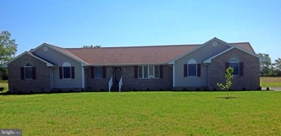 22691 Hurdle Ditch Road, Harbeson, DE 19951 - #: 1001567640