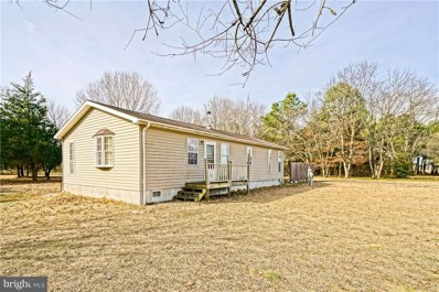 27305 Martins Farm Road, Milton, DE 19968 - #: 1001570132