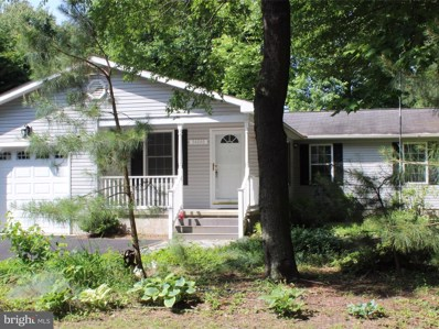 34080 Pocahontas Road, Dagsboro, DE 19939 - MLS#: 1001573370