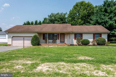 331 Doctor Smith Road, Harrington, DE 19952 - #: 1001574096