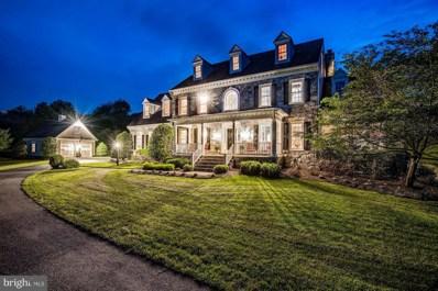 41047 Nestlewood Farm Lane, Paeonian Springs, VA 20129 - MLS#: 1001577886