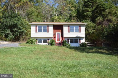 4111 Remount Road, Front Royal, VA 22630 - MLS#: 1001773779