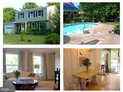 4397 Amethyst Court, Middletown, MD 21769 - MLS#: 1001864544