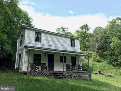 1465 Shoemaker Hollow, Mathias, WV 26812 - #: 1001865356