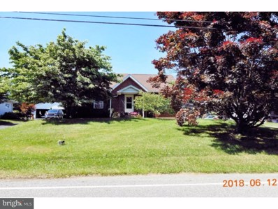 313 Sweet Arrow Lake Road, Pine Grove, PA 17963 - MLS#: 1001866730