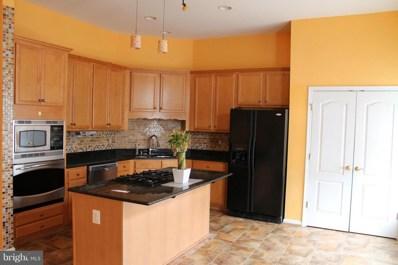 21874 Schenley Terrace, Ashburn, VA 20148 - #: 1001868744