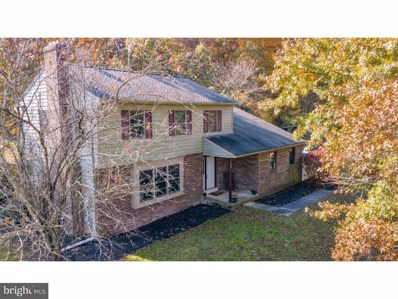 124 Old Mill Road, Sellersville, PA 18960 - MLS#: 1001891264