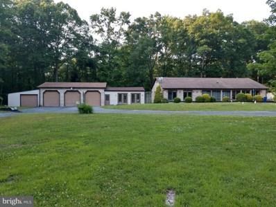 389 Maskells Mill Road, Salem, NJ 08079 - #: 1001901416