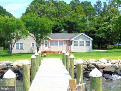 23165 Rolfe Lane, Deal Island, MD 21821 - #: 1001960460