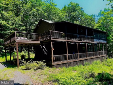 240 Stoney Mountain Road, Mathias, WV 26812 - #: 1001964170
