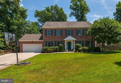 20316 Broad Run Drive, Sterling, VA 20165 - #: 1001964798