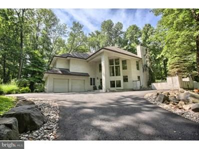 445 Hill Road, Douglassville, PA 19518 - #: 1001970214