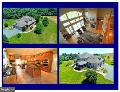 8601 Pippin Hill Lane, Chestertown, MD 21620 - MLS#: 1002024942