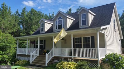 307 Perl Lane, Madison, VA 22727 - #: 1002029716