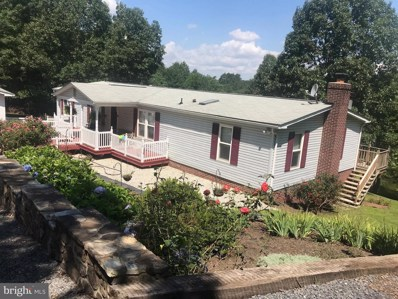 64 Twin Pond Drive, Capon Bridge, WV 26711 - #: 1002054130