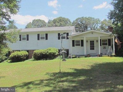5523 Waterford Rd, Rixeyville, VA 22737 - #: 1002098876