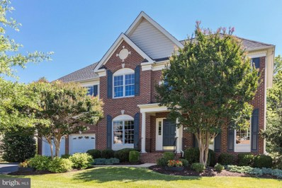 20110 Desert Forest Drive, Ashburn, VA 20147 - MLS#: 1002113354