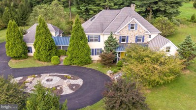 6511 Saw Mill Road, New Hope, PA 18938 - #: 1002200112
