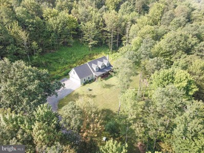 1636 Pine Hill Road, Swanton, MD 21561 - #: 1002200554