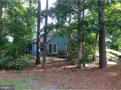 32230 Robin Hoods Loop, Millsboro, DE 19966 - MLS#: 1002216458