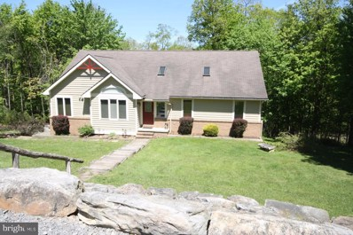 365 Pinnacle Road, Swanton, MD 21561 - #: 1002243484