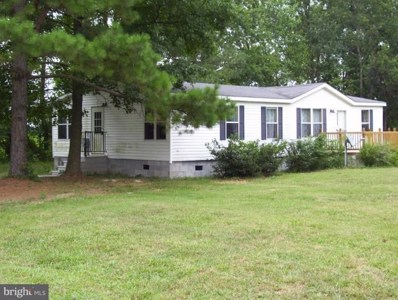 23554 Jonestown Lane, Preston, MD 21655 - #: 1002302438