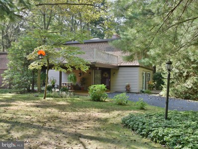 218 Village Lane, Mt Gretna, PA 17064 - #: 1002302618