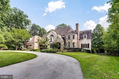 11 Spring Forest Court, Owings Mills, MD 21117 - #: 1002406714