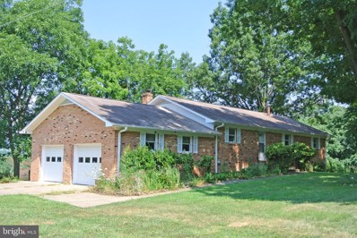 401 Seven Ponds Road, Amissville, VA 20106 - #: 1003220657