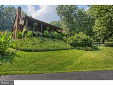 54 Speck Road, Mohnton, PA 19540 - #: 1003265808