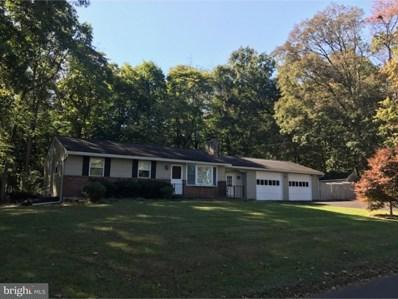 38 Turkey Lane, Furlong, PA 18925 - MLS#: 1003288871