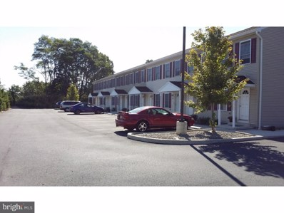 75 S Reber Street UNIT 22, Wernersville, PA 19565 - MLS#: 1003979211