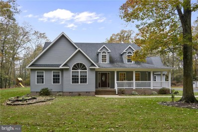 6094 Newton Road, Preston, MD 21655 - MLS#: 1004115557