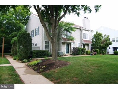 164 Shire Drive, New Hope, PA 18938 - MLS#: 1004148969