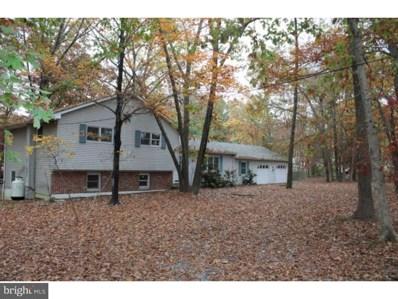 12 Butterworths Bogs Road, Tabernacle, NJ 08088 - MLS#: 1004151549
