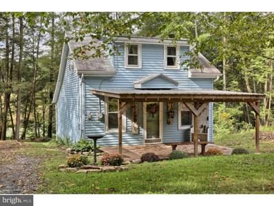 59 Lakefront Drive, Pine Grove, PA 17963 - #: 1004223250