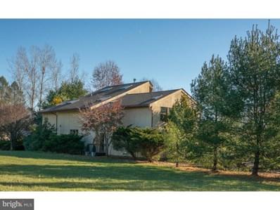 97 Uhlerstown Hill Road, Erwinna, PA 18920 - MLS#: 1004227559