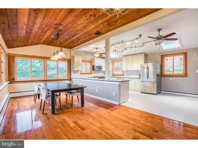 11 Solebury Mountain Road, New Hope, PA 18938 - MLS#: 1004239823