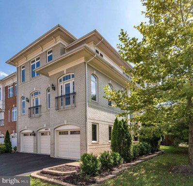 18993 Coreopsis Terrace, Leesburg, VA 20176 - #: 1004248392
